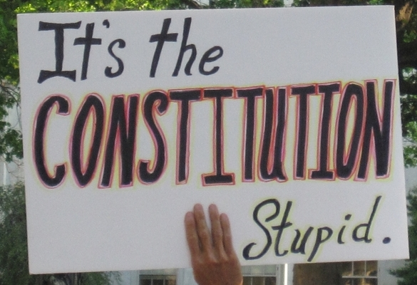 constitutionstupid